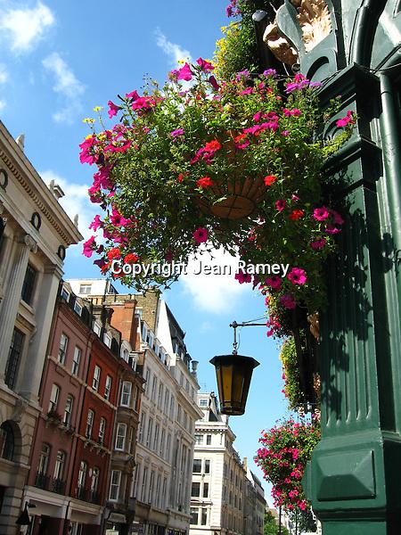 British Blooms