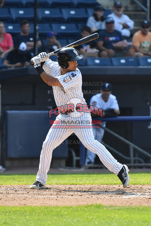 Staten Island Yankees Everson Pereira (22) at bat during a NY-Penn League game against the Connecticut Tigers on July 7, 2019 at Richmond County Bank Ballpark in Staten Island, New York.  Connecticut defeated Staten Island 3-2.  (Robert Pimpsner/Four Seam Images)