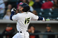 Left fielder Tim Tebow (15) of the Columbia Fireflies hits a home run in his first Class A at bat in a game against the Augusta GreenJackets on Opening Day, Thursday, April 6, 2017, at Spirit Communications Park in Columbia, South Carolina. (Tom Priddy/Four Seam Images)