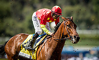 ARCADIA, CA -APRIL 08: Able Tasman #4, ridden by Mike Smith battles through kickback in the Oaks at Santa Anita Park on April 08, 2017 in Arcadia, California. (Photo by Alex Evers/Eclipse Sportswire/Getty Images)
