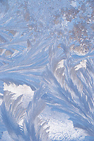 Ice Patterns - Open Edition Fine Art Prints