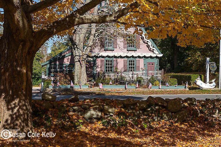 Fall foliage in Yarmouth, Cape Cod, Massachusetts, USA