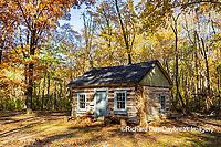 63895-16605 Cabin at Log Cabin Village in fall Kinmundy IL