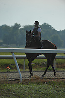 Monzon has his final workout at Sagamore Farms before heading to Belmont Saturday morning.