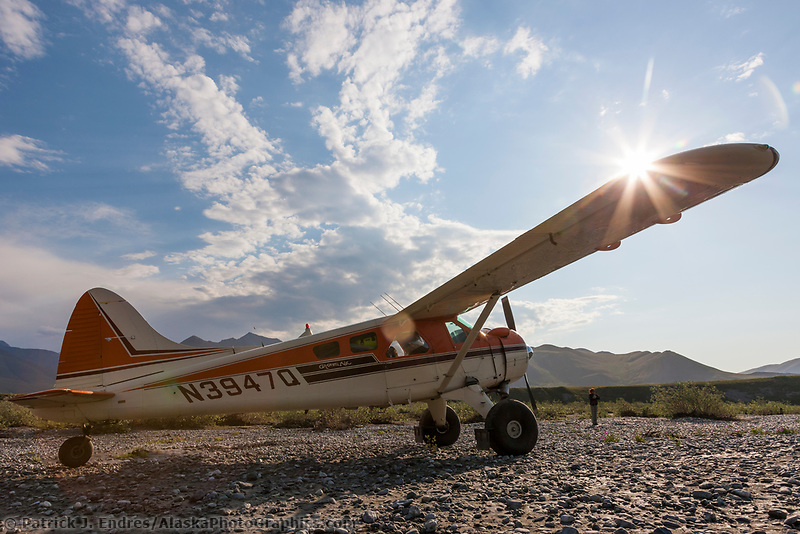 Bush pilot dirk nickisch of coyote air, on a landing strip in his de havilland beaver, along the Canning River, Arctic National Wildlife Refuge, Brooks Range mountains, Alaska.