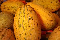 Yellow melons, Chinatown, Vancouver, British Columbia, Canada
