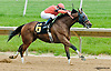 Tomorrow's Tale winning at Delaware Park on 5/30/13