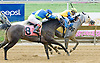 MD Sterling Silver winning at Delaware Park on 7/23/12