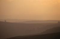 Europe/France/Auvergne/43/Haute-Loire/Env. Les Estables: Le massif du Mézenc (1754 mètres) et les pâturages au soleil couchant