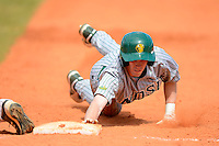 North Dakota State Bison third baseman Paul Funk (1) dives back to first during a game against the Bowling Green Falcons at Chain of Lakes Stadium on March 9, 2013 in Winter Haven, Florida.  NDSU defeated Bowling Green 8-5.  (Mike Janes/Four Seam Images)
