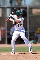 Oakland Athletics infielder Edwin Diaz (29) during an Instructional League game against the Chicago Cubs on October 16, 2013 at Papago Park Baseball Complex in Phoenix, Arizona.  (Mike Janes/Four Seam Images)