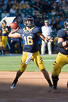 September 17, 2011:  California's Allan Bridgford starts to throw the ball down the field to his receiver during a game against Presbyterian Football at AT&T Park, San Francisco, Ca  California Defeated Presbyterian 63 - 12