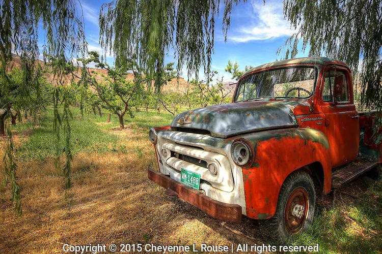 Peach Orchard International Truck<br /> Colorado