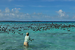 CHASING BIRDS IN LOS ROQUES?