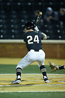 Chris Lanzilli (24) of the Wake Forest Demon Deacons at bat against the Notre Dame Fighting Irish at David F. Couch Ballpark on March 10, 2019 in  Winston-Salem, North Carolina. The Fighting Irish defeated the Demon Deacons 8-7 in 10 innings in game two of a double-header. (Brian Westerholt/Four Seam Images)