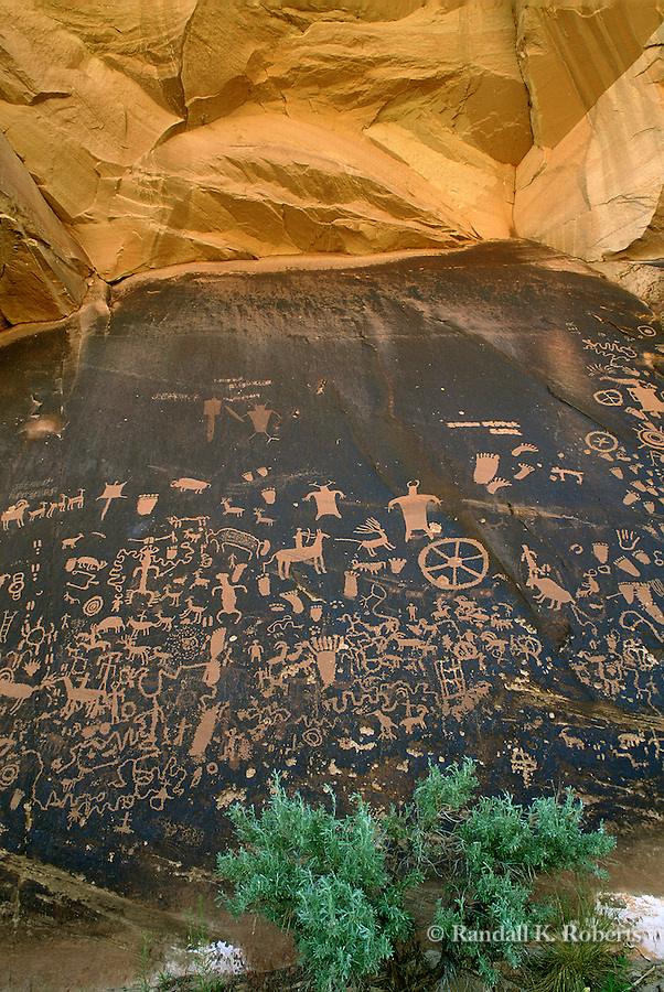Newspaper Rock petroglyph panel, Utah