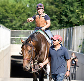 Belmont Stakes contender First Dude heads back after a jog over the track on 6/4/10.