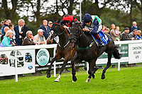 Winner of Bathwick Tyres Salisbury Handicap (Class 6), Ocean Gail (14) ridden by George Wood and trained by Richard Priceduring Afternoon Racing at Salisbury Racecourse on 7th August 2017