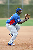 Marquez Smith #73 of the Chicago Cubs participates in infield practice during spring training workouts at the Cubs complex on February 19, 2011  in Mesa, Arizona. .Photo by Bill Mitchell / Four Seam Images.