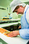 Loch Fyne salmon deboning and packing plant.   <br /> West Coast of Scotland