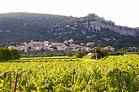 Chateau de Lascaux, Vacquieres village. Pic St Loup. Languedoc. The village of Corconne. Les Contreforts des Cevennes. Tourtourelle area. France. Europe. Vineyard.