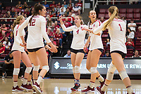 Stanford, CA - November 1, 2019: Kate Formico, Audriana Fitzmorris, Meghan McClure, Jenna Gray, Madeleine Gates at Maples Pavilion. The No. 5 Stanford Cardinal swept the Oregon State Beavers 3-0.