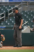 Umpire Justin Whiddon during a Florida State League game between the Lakeland Flying Tigers and Jupiter Hammerheads on August 12, 2019 at Roger Dean Chevrolet Stadium in Jupiter, Florida.  Jupiter defeated Lakeland 9-3.  (Mike Janes/Four Seam Images)