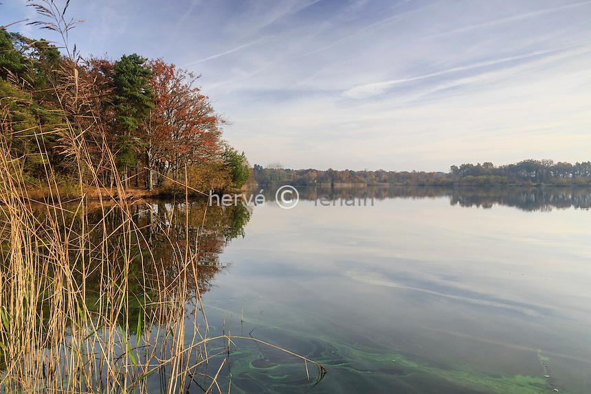 France, Loiret (45), Combreux, étang de la Vallée en automne // France, Loiret, Combreux, pond of the Vallée