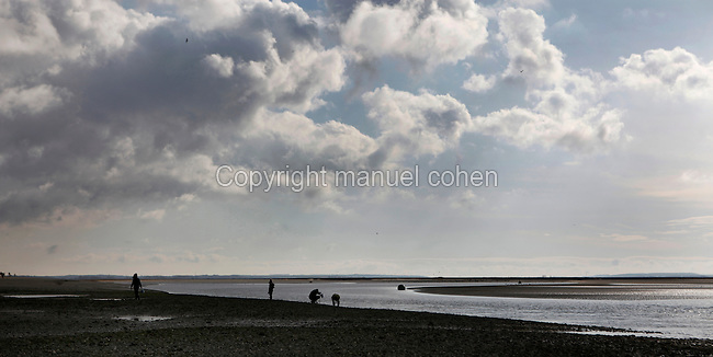 Low angle view of Le Crotoy beach, Baie de Somme, France, pictured on February 20, 2010 in the morning. Le Crotoy is said to be the only South facing beach in Northern France. The long sands around the bay are populated by fishermen, both in boats and digging for shellfish, and shepherds grazing their sheep on the salt grass marshes at low tide. Beneath wide skies the channels of seawater snake across the open sands creating natural abstract patterns. Picture by Manuel Cohen.