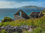 County Kerry, Ireland: Stone ruins on the cliffs of Blasket Sound on the Dingle Peninsula