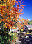 Fall scene at Leonards Mills, a museum in Bradley, Maine, USA