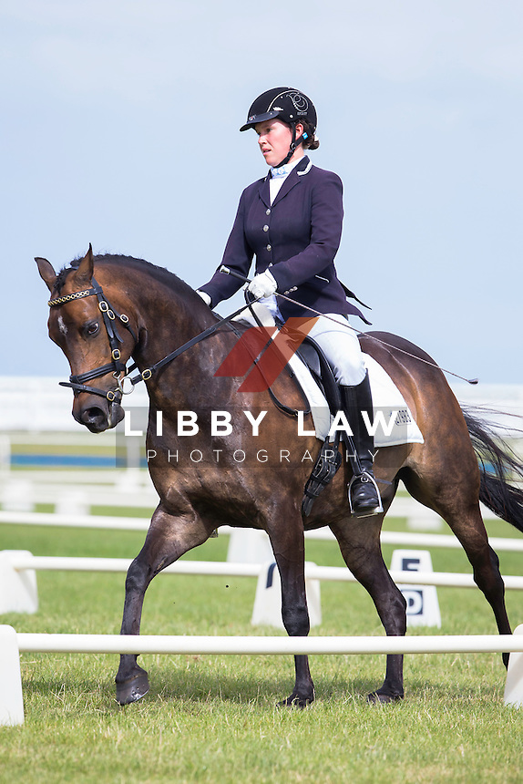 NZL-Willa Aitken (KIRKWOOD GREENLIGHT) 2015 NZL-SAMSUNG/GTL Networks NZ Pony and Young Rider Championships (Thursday 15 January) CREDIT: Libby Law COPYRIGHT: LIBBY LAW PHOTOGRAPHY