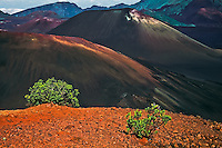 The crater landscape of HALEAKALA NATIONAL PARK on Maui in Hawaii is dominated by cinder cones