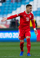 17th November 2019; Stadion Rajko Mitic, Belgrade, Serbia; European Championships 2020 Qualifier, Serbia versus Ukraine; Dusan Tadic of Serbia reacts - Editorial Use