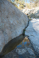 Intermittent stream in Bear Canyon, Coronado National Forest, Arizona
