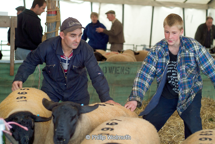 Builth Wells Annual Ram Sale.