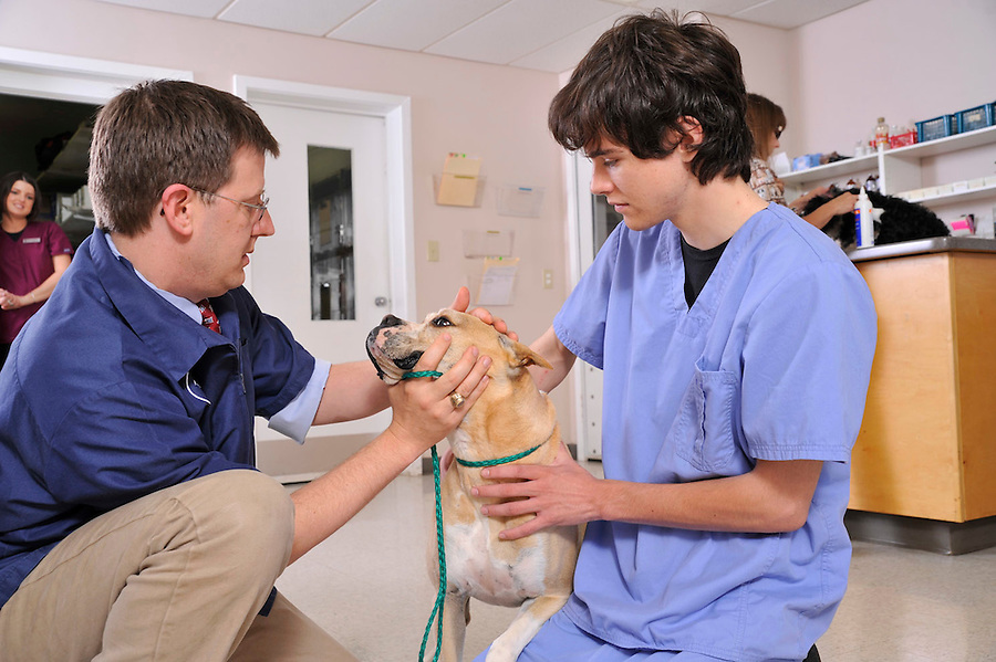 Matthews Animal Clinic.