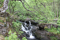 Inversnaid, Loch Lomond