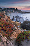 Evening light over coastal homes at  Moss Beach, San Mateo County coast, California