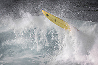 Surfer Portfolio