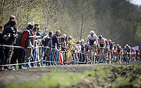 Fabian Cancellara (SUI/Trek-Segafredo) in the infamous Trou&eacute;e d'Arenberg / Wallers Forest (2.4km), followed closely by World Champion Peter Sagan (SVK/Tinkoff)<br /> <br /> 114th Paris-Roubaix 2016