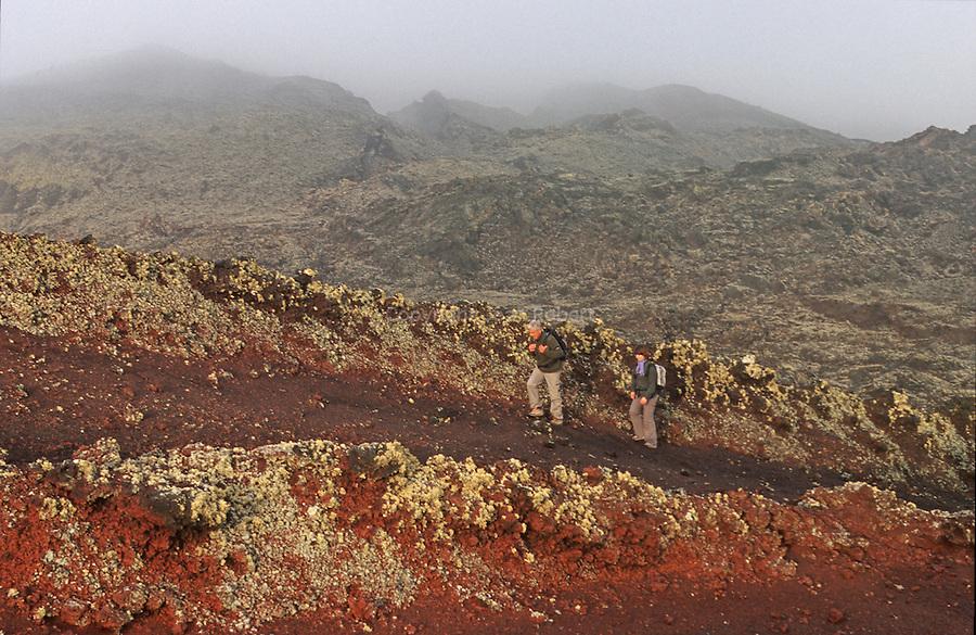 Champs de lave. Caldeira de la Ria et hornitos volcaniques. Parc national de Timanfaya. Ile de Lanzarote.