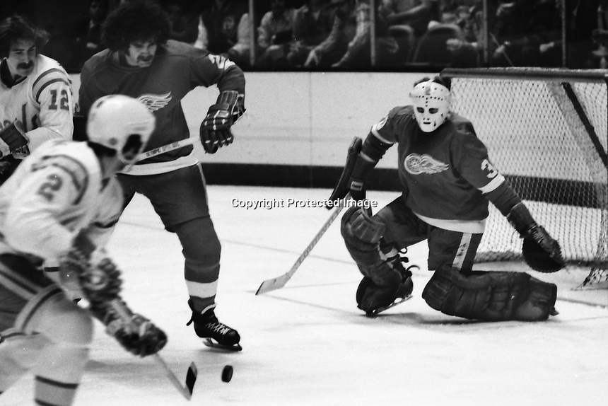 Seals vs Detroit Red Wings..Seals Rick Hampton blocked by #22 Wings Larry Giroux or Nelson Pyatt and goalie #30 Bill Richardson. (1975 photo/Ron Riesterer)