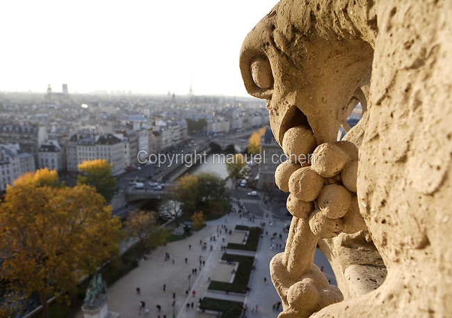Chimera, overlooking the city and the river Seine, Notre Dame de Paris, 1163 ? 1345, initiated by the bishop Maurice de Sully, Ile de la Cité, Paris, France. Picture by Manuel Cohen