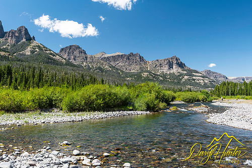 The Wiggins Fork, A trout stream high in the Absaroka Range