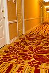 Tropicana Carpet 20101113