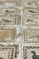 Mosaic floor in the House of the Birds, an old ruin in the ancient city of Italica, in modern day Santiponce, Seville, Andalusia, Spain.