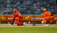 1st November 2019; Western Australia Cricket Association Ground, Perth, Western Australia, Australia; Womens Big Bash League Cricket, Perth Scorchers versus Melbourne Renegades; Danielle Wyatt of the Melbourne Renegades plays a reverse sweep during her innings