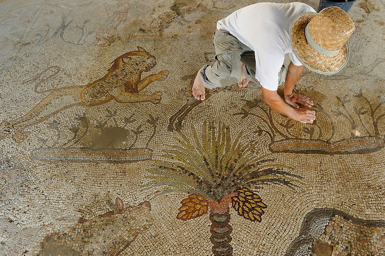 GAZA-JULY 12- Near the largest palestinian refugee camp in Gaza, Fadel Al Utol clears the sand covering the mosaic of the Byzantine church Mukheitem. This mosaic represents a set of food consumed in the sixth century but also utensils of that periods. <br />