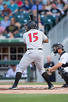 Jason Rogers (15) of the Indianapolis Indians at bat against the Charlotte Knights at BB&T BallPark on June 16, 2017 in Charlotte, North Carolina.  The Knights defeated the Indians 12-4.  (Brian Westerholt/Four Seam Images)